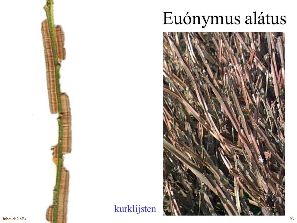 Euónymus alátus kurklijsten 93inhoud: 2
