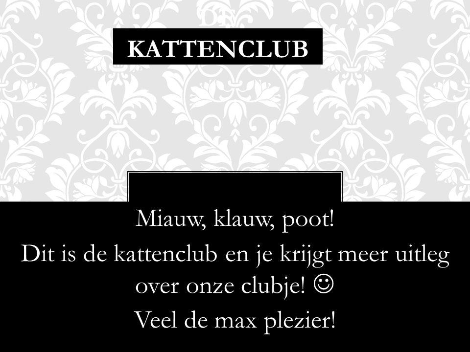 DE KATTENCLUB Miauw, klauw, poot! Dit is de kattenclub en je krijgt meer uitleg over onze clubje! Veel de max plezier!