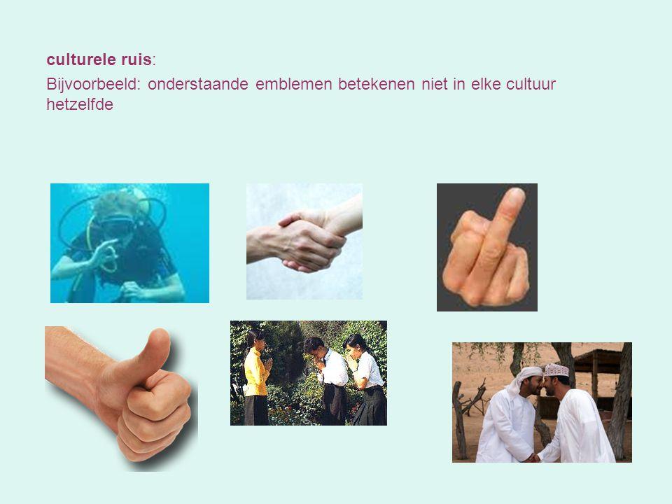 Communicatie tussen personen met verschillende culturele achtergronden !!!.