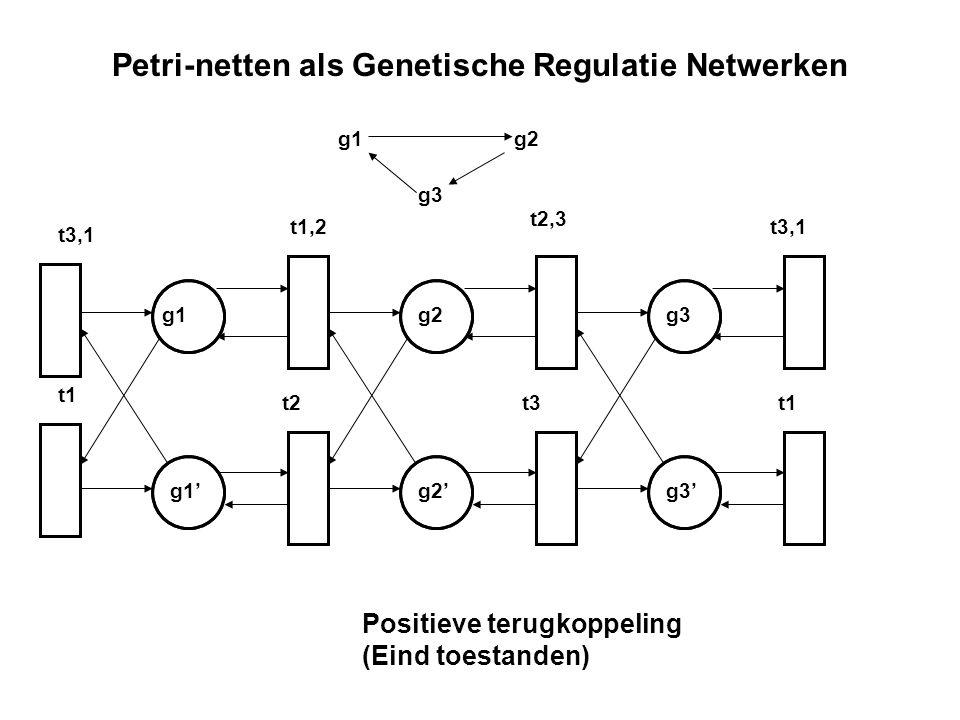 Petri-netten als Genetische Regulatie Netwerken g2 g2' g1 g1' g3 g3' t3,1 t1,2 t2,3 t3,1 t1 t2t3t1 g1g2 g3 Positieve terugkoppeling (Eind toestanden)
