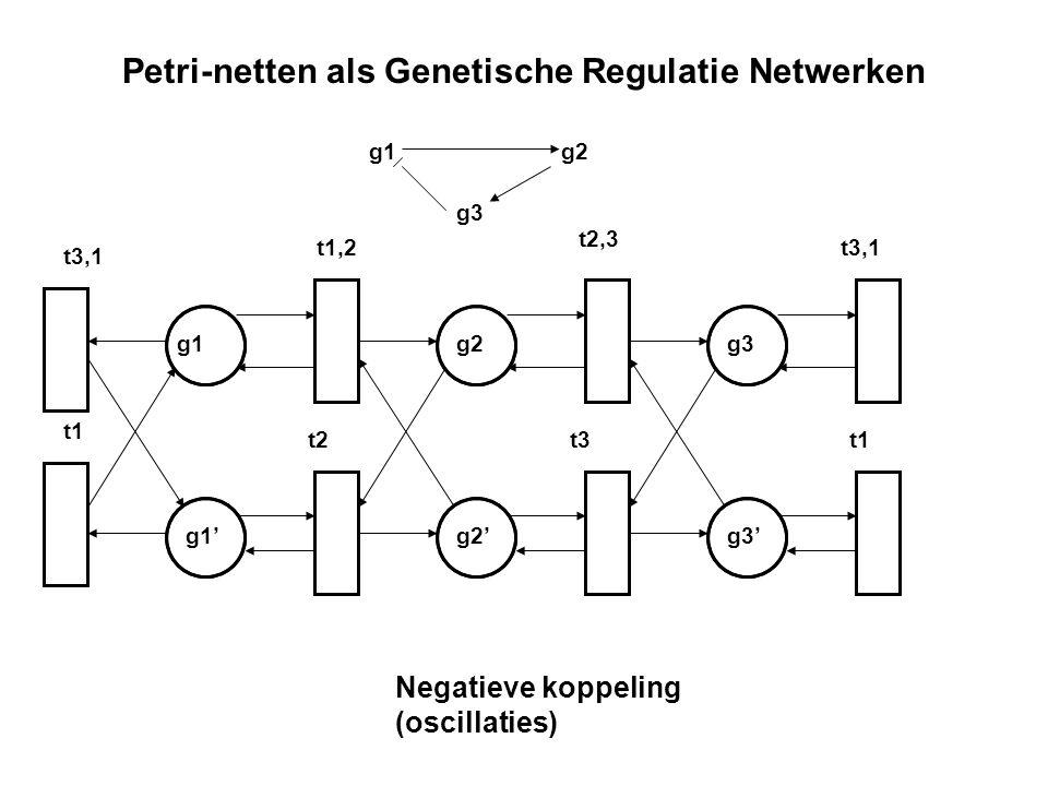Petri-netten als Genetische Regulatie Netwerken g2 g2' g1 g1'g3' g3 g1g2 g3 Negatieve koppeling (oscillaties) t3,1 t1,2 t2,3 t3,1 t1 t2t3t1
