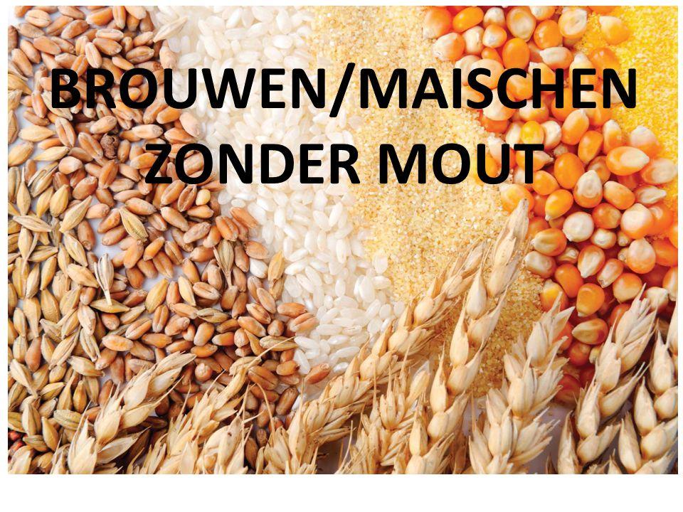 BROUWEN/MAISCHEN ZONDER MOUT