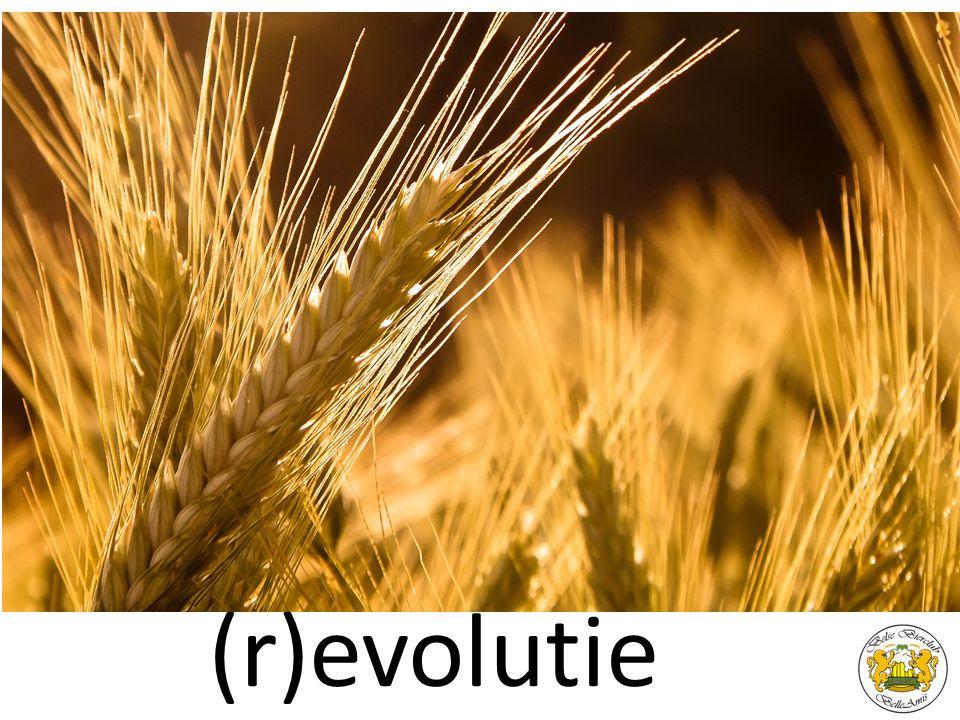 (r)evolutie