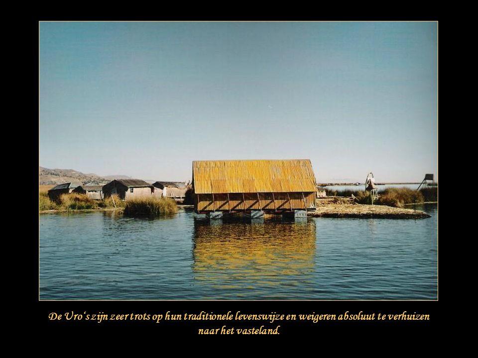 """Het Titicacameer is het grootste zoetwatermeer van Zuid-Amerika, met een oppervlakte van 8.288 km². Het bevindt zich op de """"altiplano"""", de hoogvlakte"""