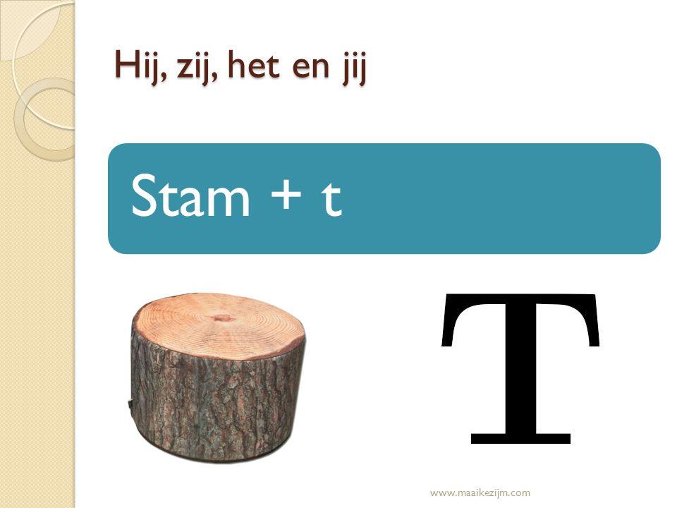 Hij, zij, het en jij Stam + t www.maaikezijm.com