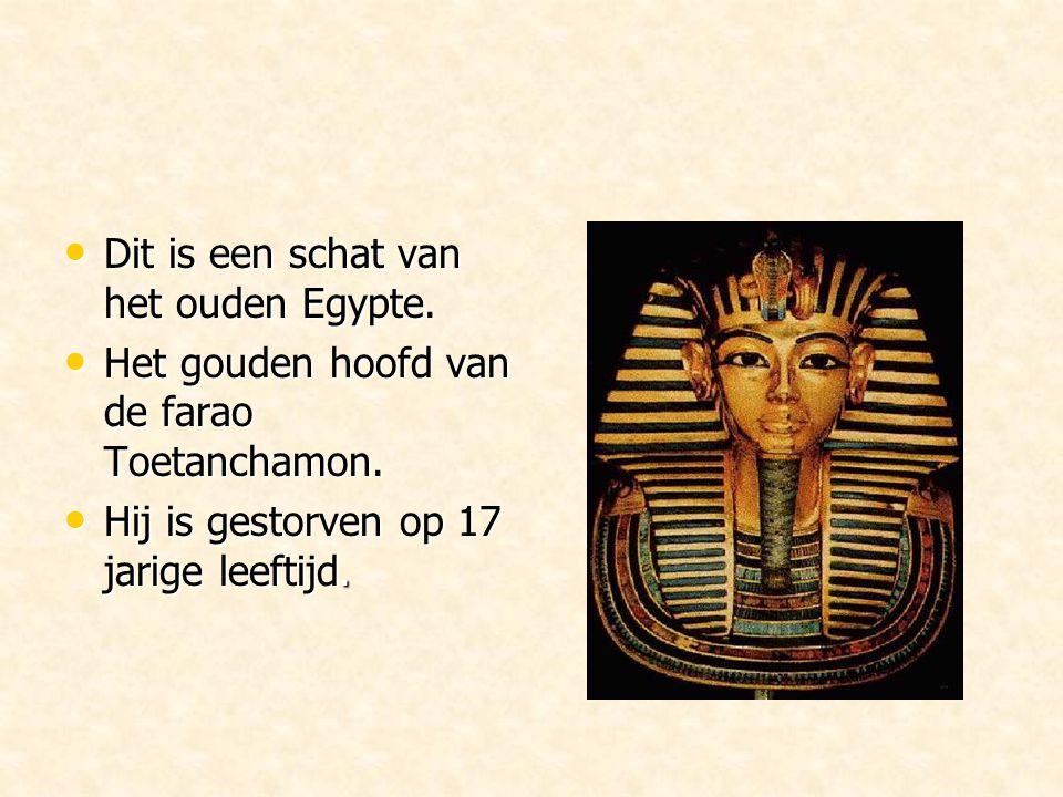Dit is een schat van het ouden Egypte.Dit is een schat van het ouden Egypte.
