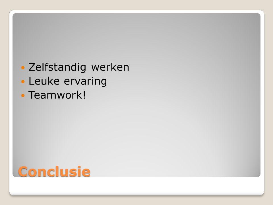 Conclusie Zelfstandig werken Leuke ervaring Teamwork!