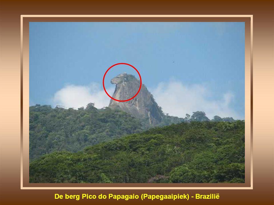 De berg Pico do Papagaio (Papegaaipiek) - Brazilië