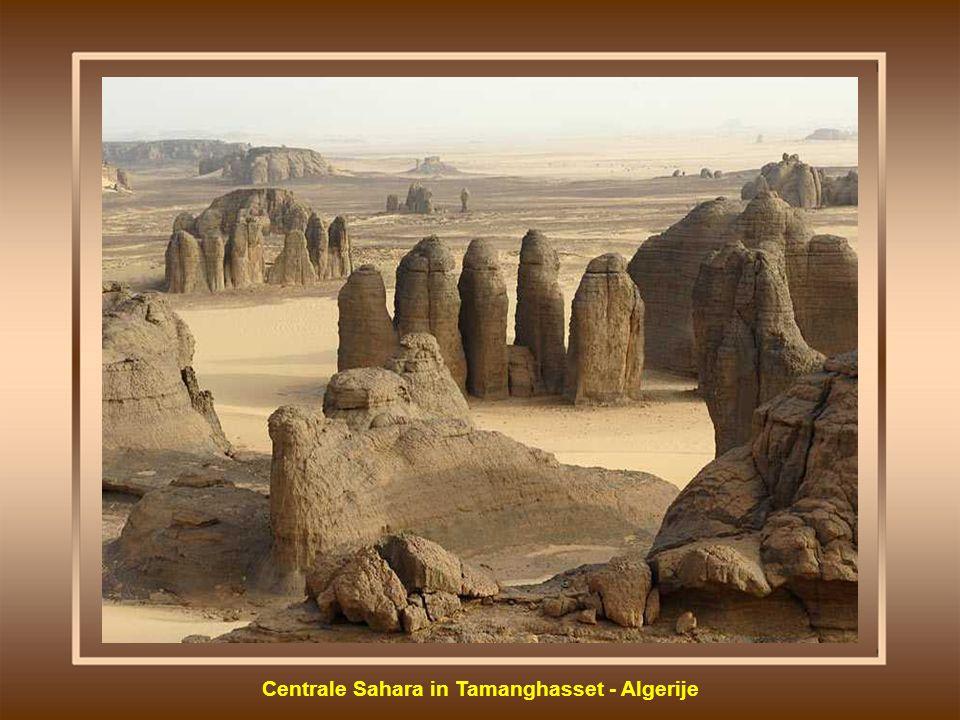 Centrale Sahara in Tamanghasset - Algerije
