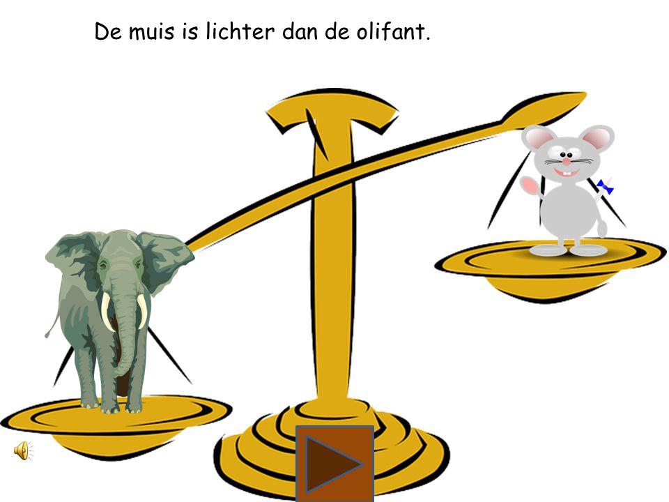Wat is lichter, de olifant of de muis?