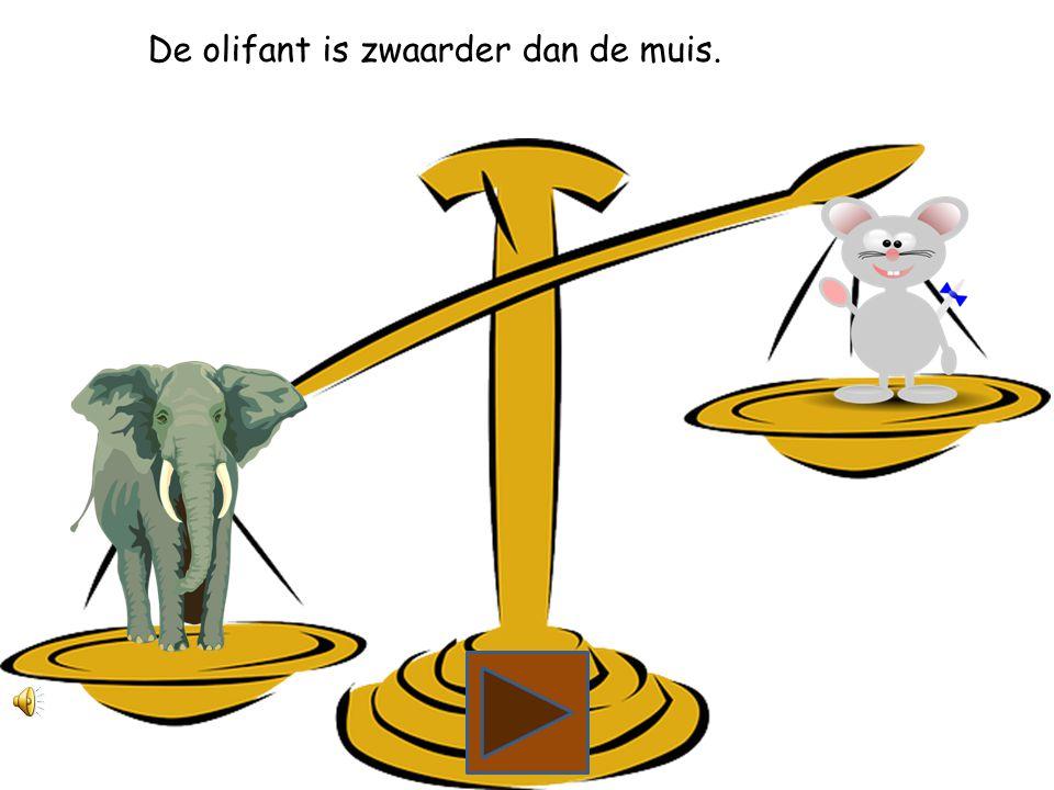 Wat is zwaarder, de olifant of de muis?