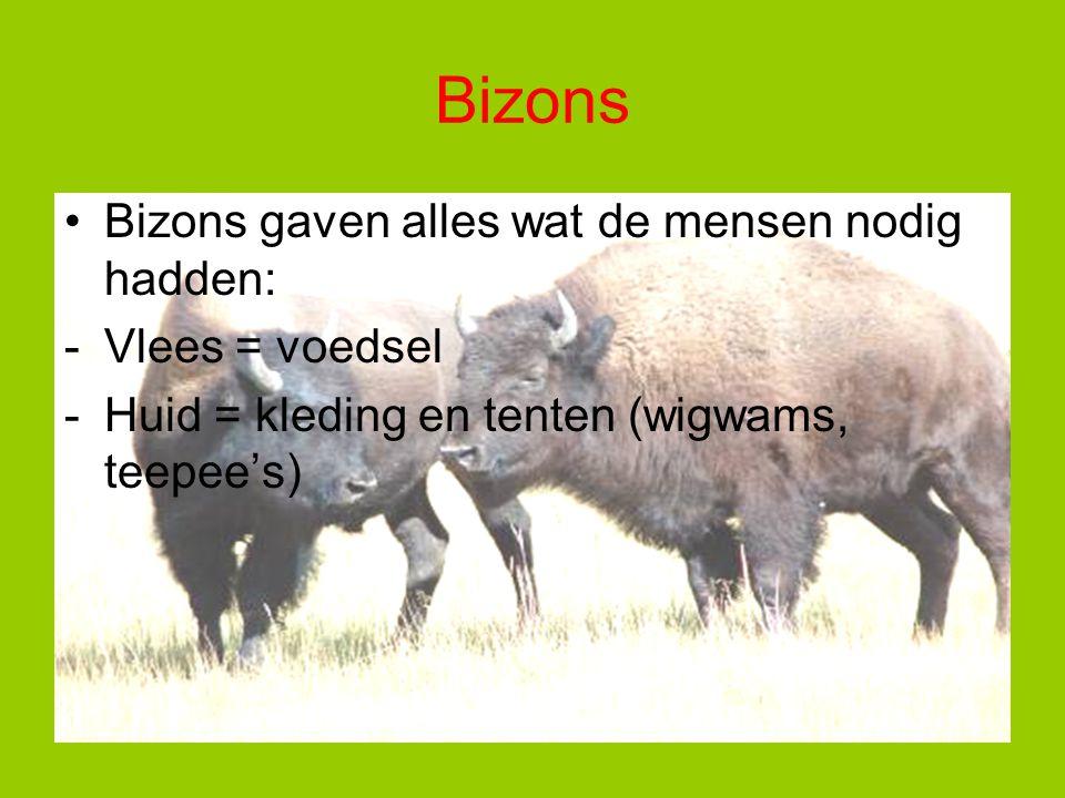 Bizons Bizons gaven alles wat de mensen nodig hadden: -Vlees = voedsel -Huid = kleding en tenten (wigwams, teepee's)
