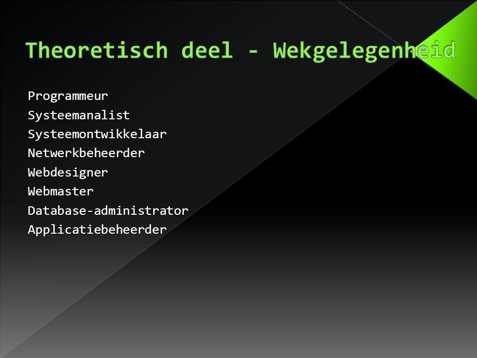Programmeur Systeemanalist Systeemontwikkelaar Netwerkbeheerder Webdesigner Webmaster Database-administrator Applicatiebeheerder