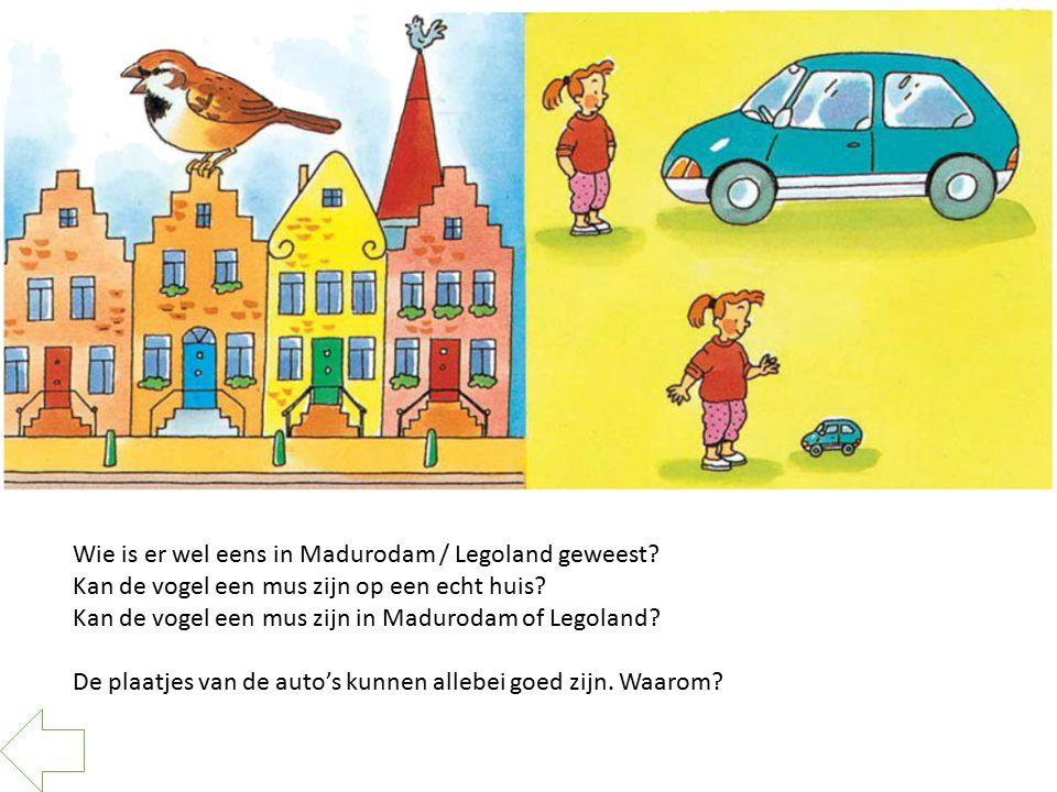 Wie is er wel eens in Madurodam / Legoland geweest? Kan de vogel een mus zijn op een echt huis? Kan de vogel een mus zijn in Madurodam of Legoland? De