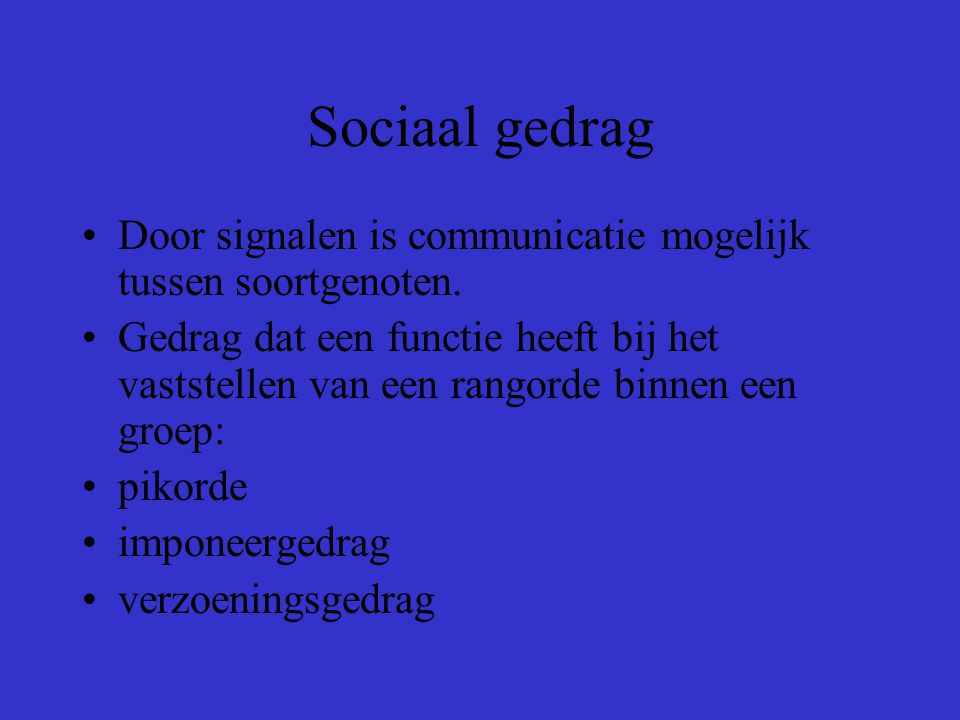 Sociaal gedrag Het gedrag van soortgenoten ten opzichte van elkaar noemen we sociaal gedrag. Een handeling van de ene soortgenoot is de prikkel voor d