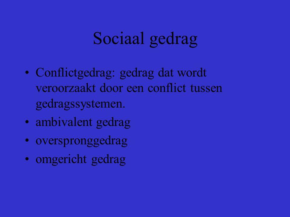 Sociaal gedrag Territoriumgedrag: gedrag met als functie het afbakenen van een territorium en het verdedigen ervan tegen binnendringende soortgenoten.