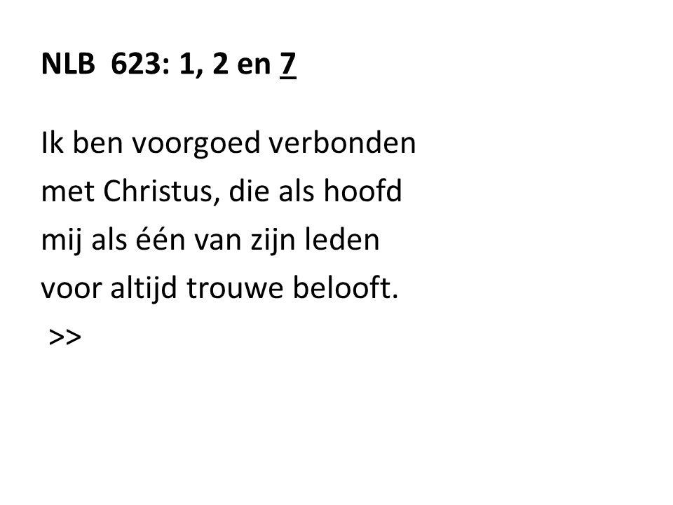 NLB 623: 1, 2 en 7 Ik ben voorgoed verbonden met Christus, die als hoofd mij als één van zijn leden voor altijd trouwe belooft. >>