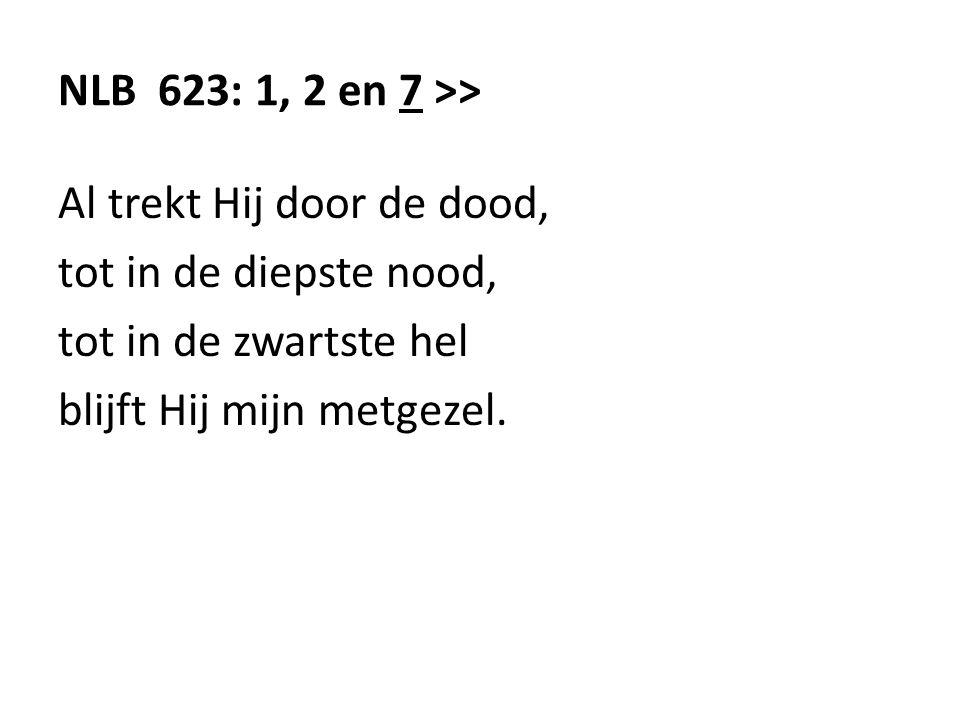 NLB 623: 1, 2 en 7 >> Al trekt Hij door de dood, tot in de diepste nood, tot in de zwartste hel blijft Hij mijn metgezel.