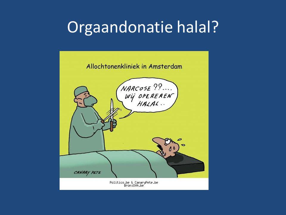 Orgaandonatie halal?