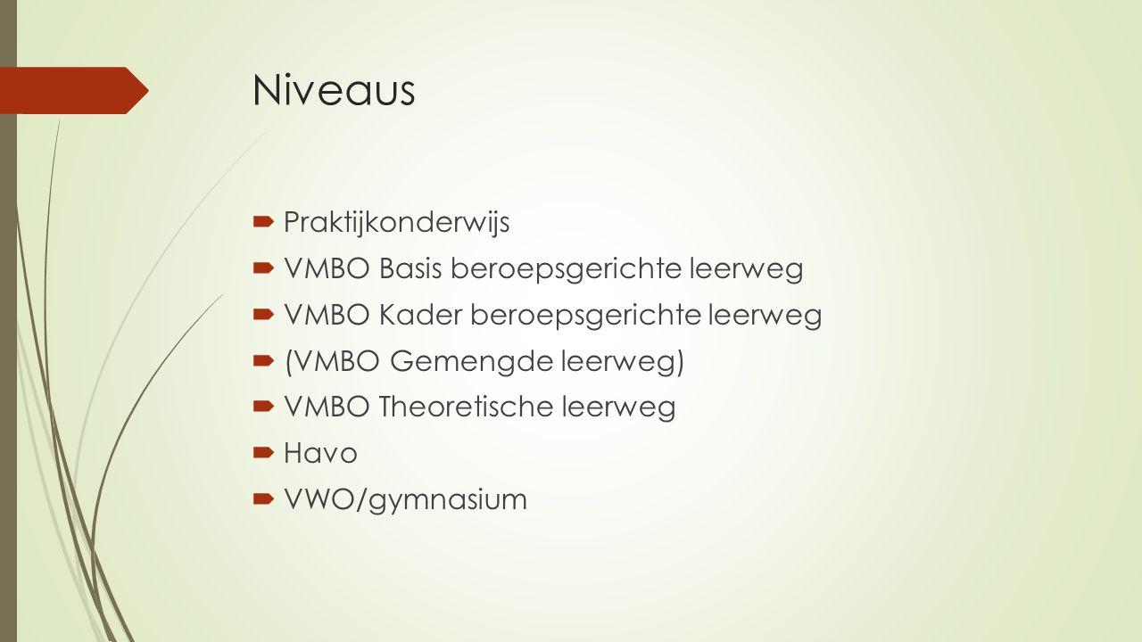Niveaus  Praktijkonderwijs  VMBO Basis beroepsgerichte leerweg  VMBO Kader beroepsgerichte leerweg  (VMBO Gemengde leerweg)  VMBO Theoretische leerweg  Havo  VWO/gymnasium