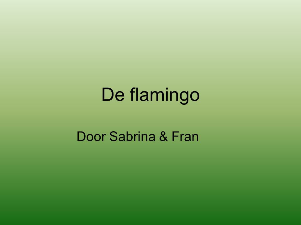 De flamingo Door Sabrina & Fran