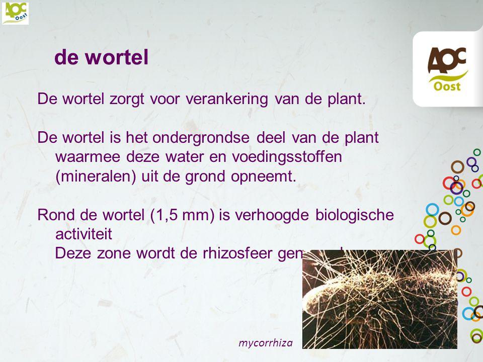 Bemesting algemeen Planten hebben voedingsstoffen nodig om goed te kunnen groeien. De plant moet op juiste tijdstip over voldoende voedingsstoffen kun