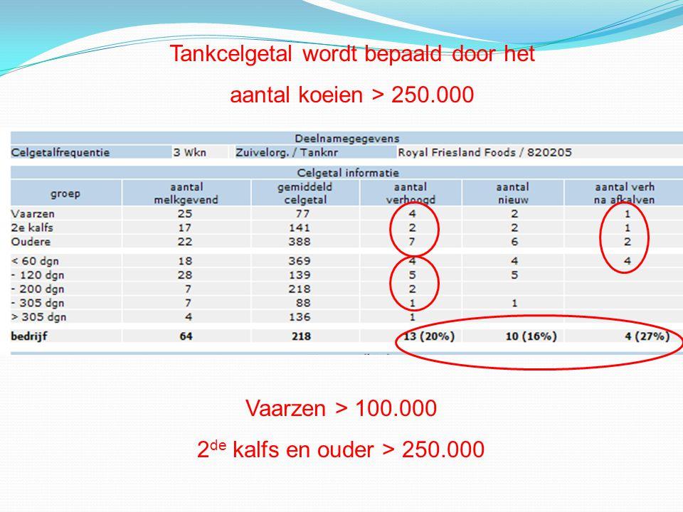 Tankcelgetal wordt bepaald door het aantal koeien > 250.000 Vaarzen > 100.000 2 de kalfs en ouder > 250.000