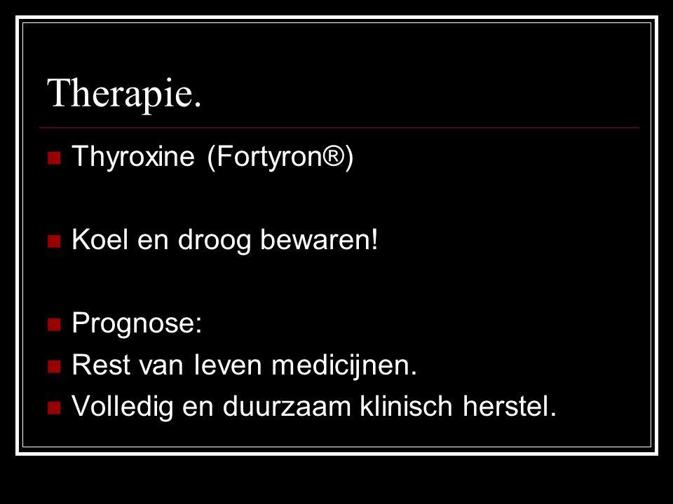 Therapie. Thyroxine (Fortyron®) Koel en droog bewaren! Prognose: Rest van leven medicijnen. Volledig en duurzaam klinisch herstel.