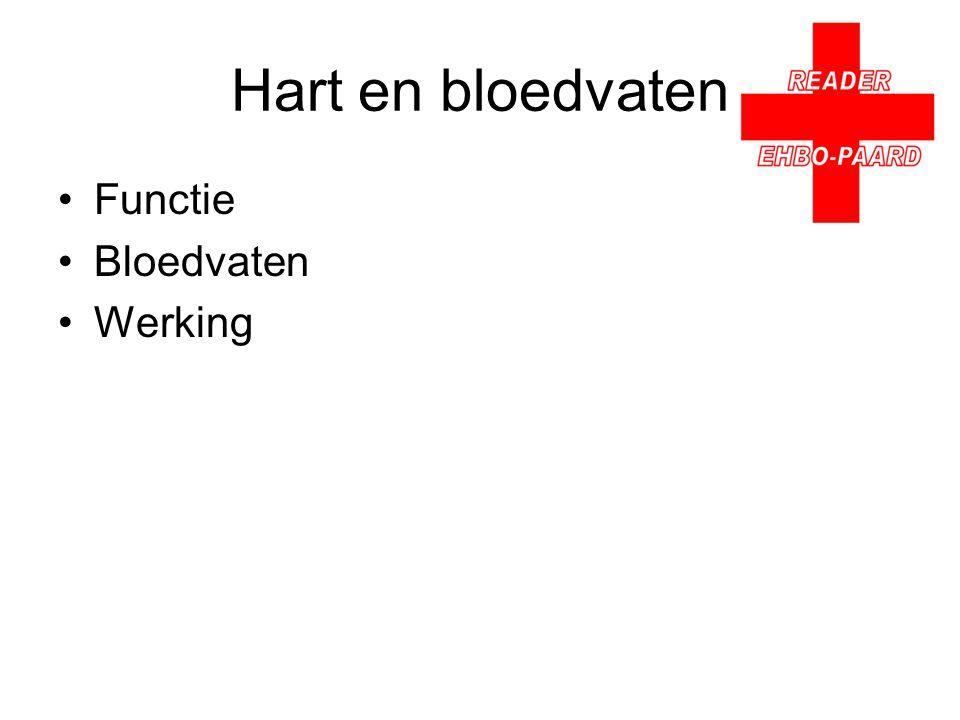 Hart en bloedvaten Functie Bloedvaten Werking