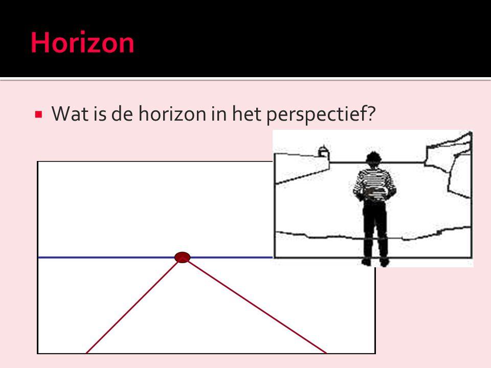  Hoe kun je zien dat dit kikkerperspectief is?