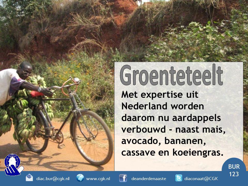 Met expertise uit Nederland worden daarom nu aardappels verbouwd - naast mais, avocado, bananen, cassave en koeiengras. BUR 123 diac.bur@cgk.nl www.cg