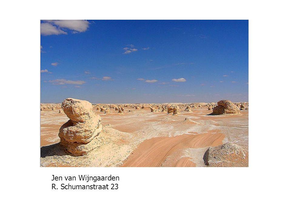 Jen van Wijngaarden R. Schumanstraat 23