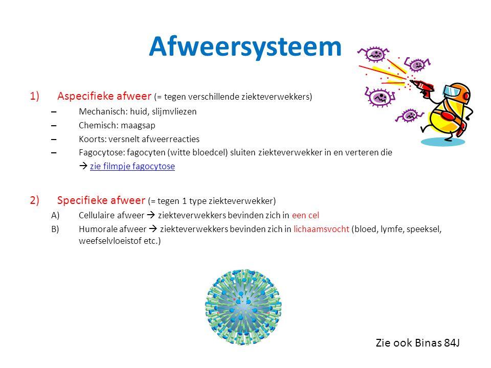 Afweersysteem 1)Aspecifieke afweer (= tegen verschillende ziekteverwekkers) – Mechanisch: huid, slijmvliezen – Chemisch: maagsap – Koorts: versnelt afweerreacties – Fagocytose: fagocyten (witte bloedcel) sluiten ziekteverwekker in en verteren die  zie filmpje fagocytosezie filmpje fagocytose 2) Specifieke afweer (= tegen 1 type ziekteverwekker) A)Cellulaire afweer  ziekteverwekkers bevinden zich in een cel B)Humorale afweer  ziekteverwekkers bevinden zich in lichaamsvocht (bloed, lymfe, speeksel, weefselvloeistof etc.) Zie ook Binas 84J