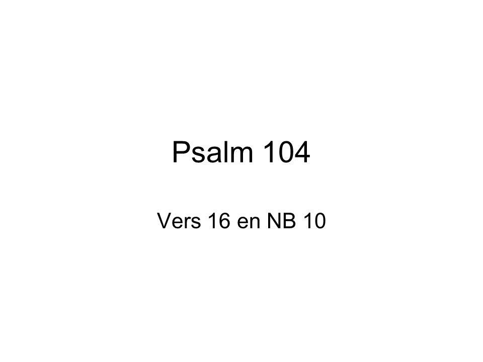Psalm 104 Vers 16 en NB 10