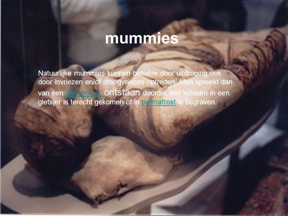 mummies Natuurlijke mummies kunnen behalve door uitdroging ook door invriezen en/of droogvriezen optreden.