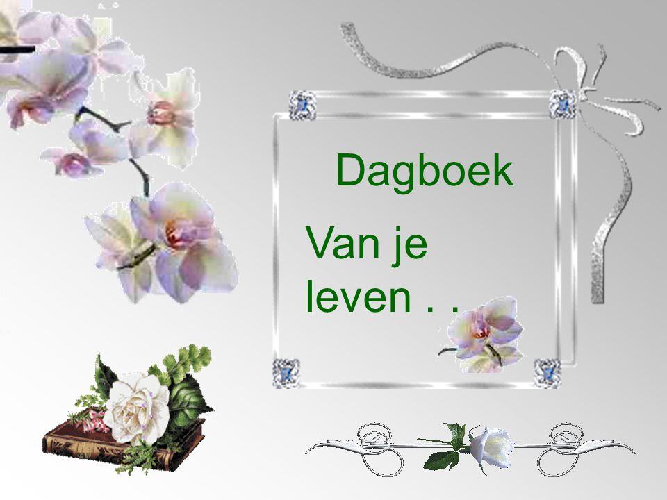 Dagboek Van je leven...