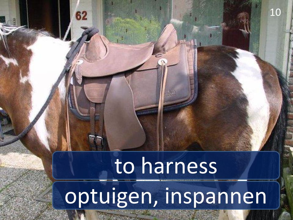 optuigen, inspannen to harness 10