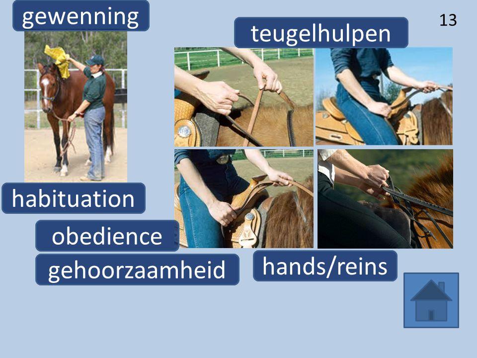 13 habituation gewenning hands/reins teugelhulpen obedience gehoorzaamheid