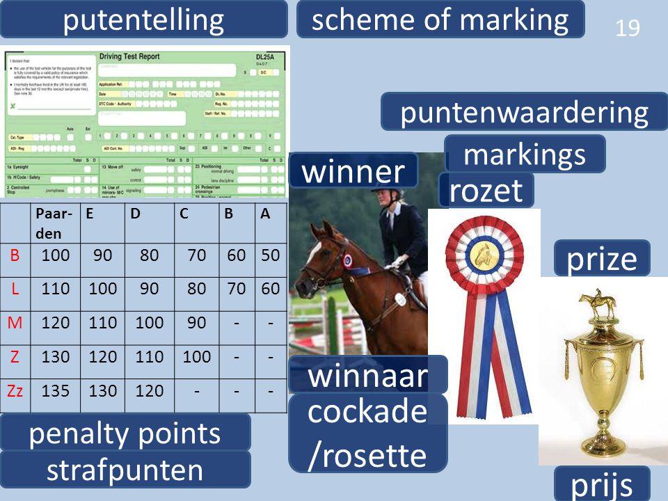 19 winnaar winner rozet cockade /rosette prize prijs puntenwaardering markings Paar- den EDCBA B1009080706050 L11010090807060 M12011010090-- Z13012011