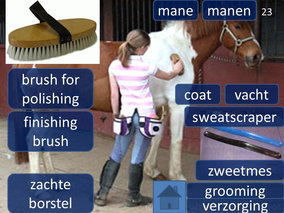 verzorging grooming 23 zachte borstel brush for polishing finishing brush manemanen coatvacht sweatscraper zweetmes