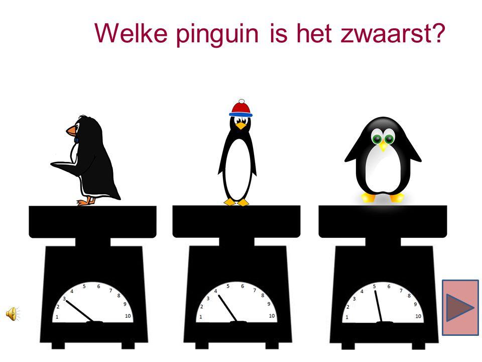 Welke pinguin is het zwaarst