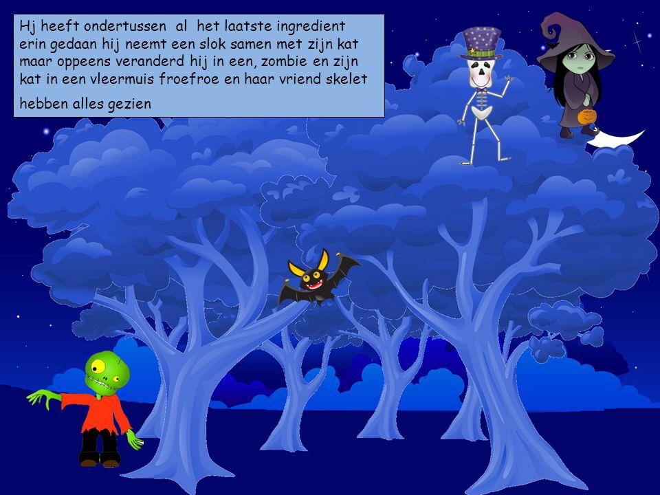 Hj heeft ondertussen al het laatste ingredient erin gedaan hij neemt een slok samen met zijn kat maar oppeens veranderd hij in een, zombie en zijn kat in een vleermuis froefroe en haar vriend skelet hebben alles gezien Kies je personages en sleep ze op de prent.
