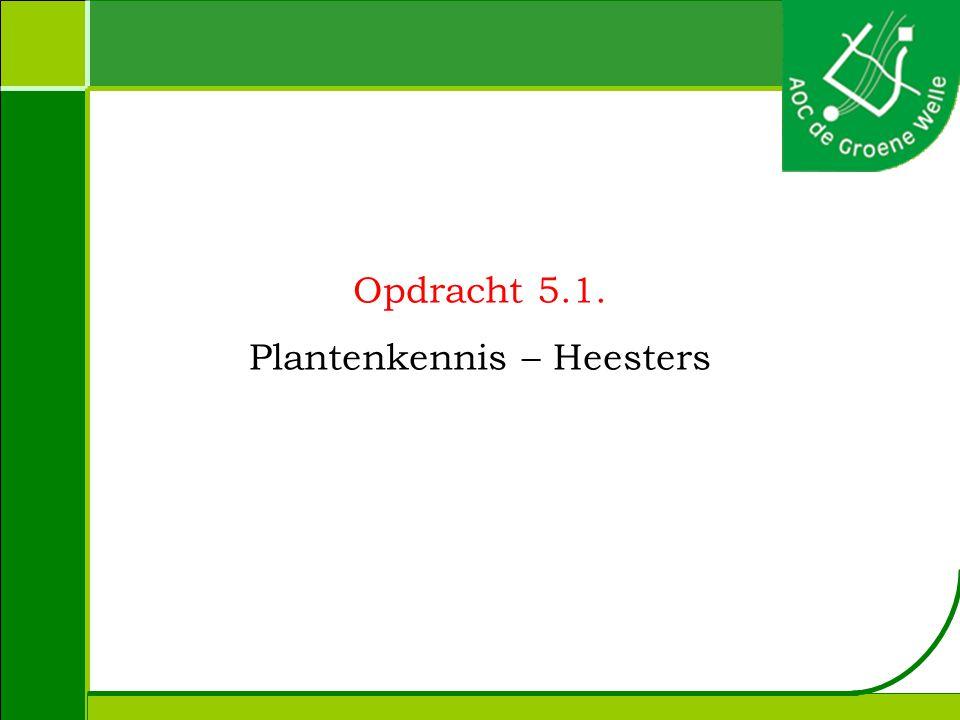 Opdracht 5.1. Plantenkennis – Heesters