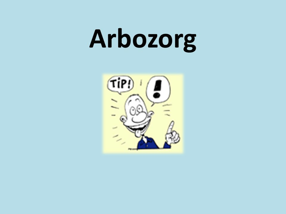 Arbozorg