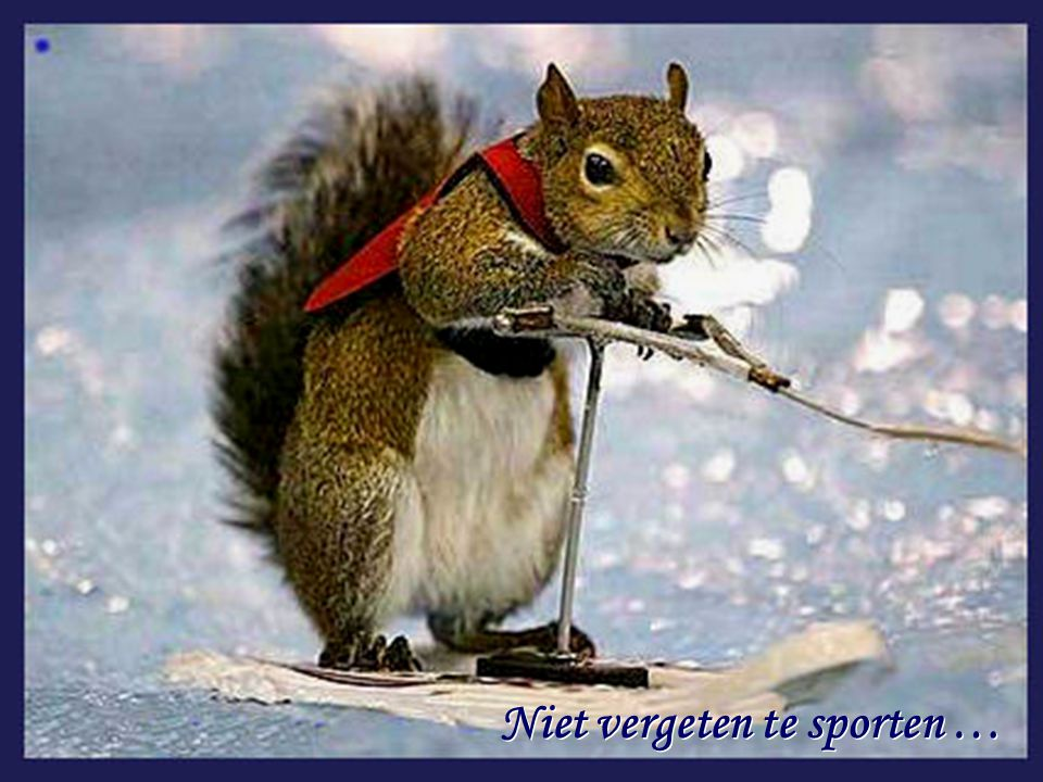 Niet vergeten te sporten … Niet vergeten te sporten …