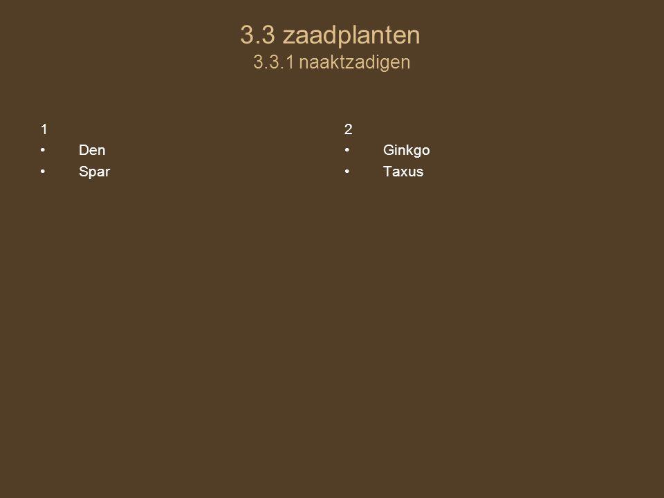 3.3 zaadplanten 3.3.1 naaktzadigen 1 Den Spar 2 Ginkgo Taxus