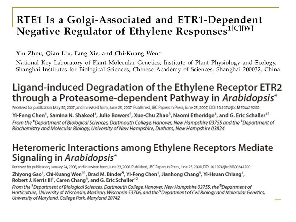 Protein stability in ethylene signaling Ethylene biosynthesis/perception/signal ACC synthaseACC oxidase SAMACCC2H4 Bindt PERE: Primairy Ethylene Response Element Bindt ERE: Ethylene Response Element