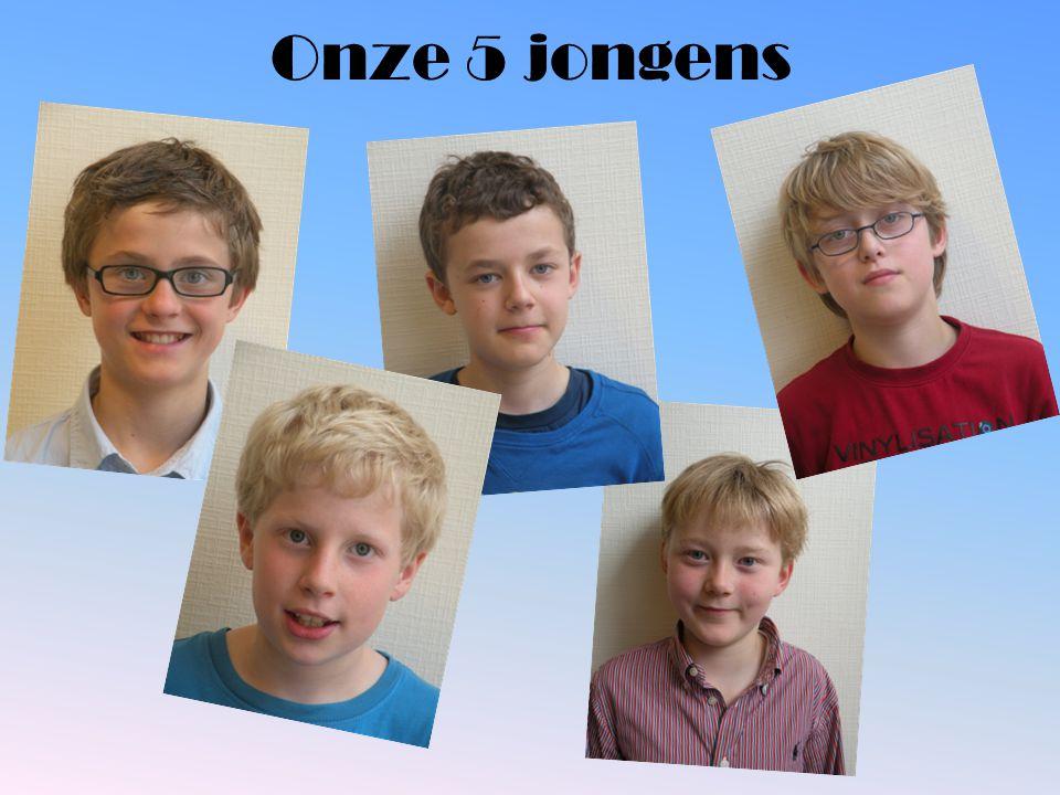 Onze 5 jongens