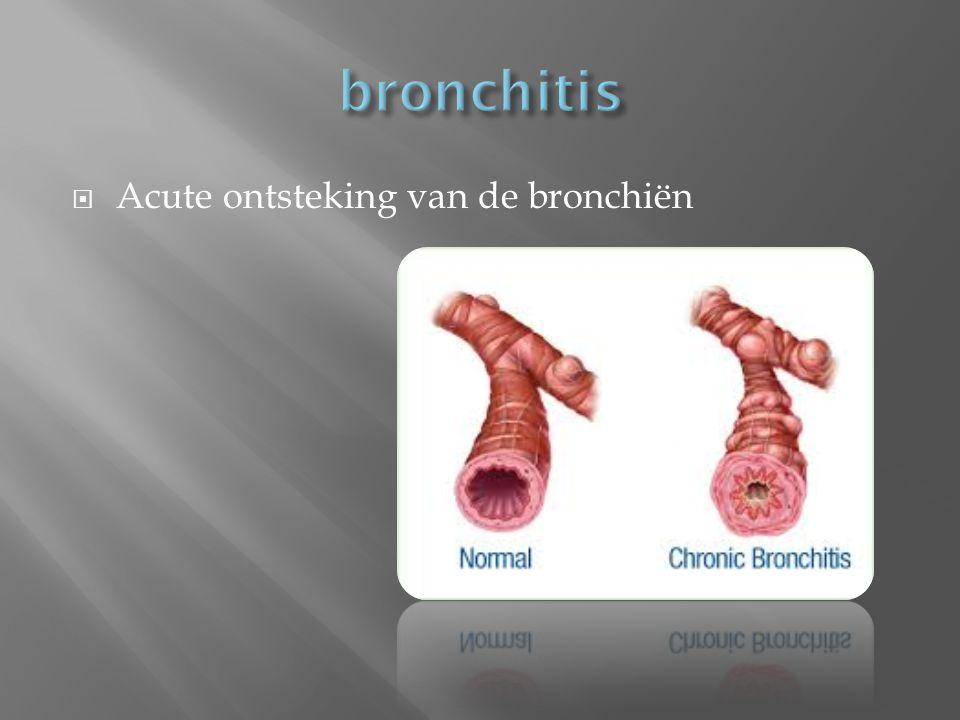  Acute ontsteking van de bronchiën