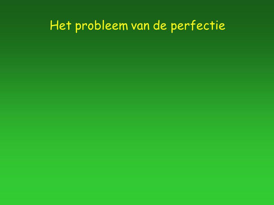 Het probleem van de perfectie